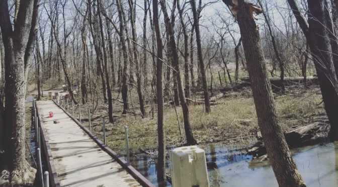 Connecting to Nature with Custom EZ Trail Systems